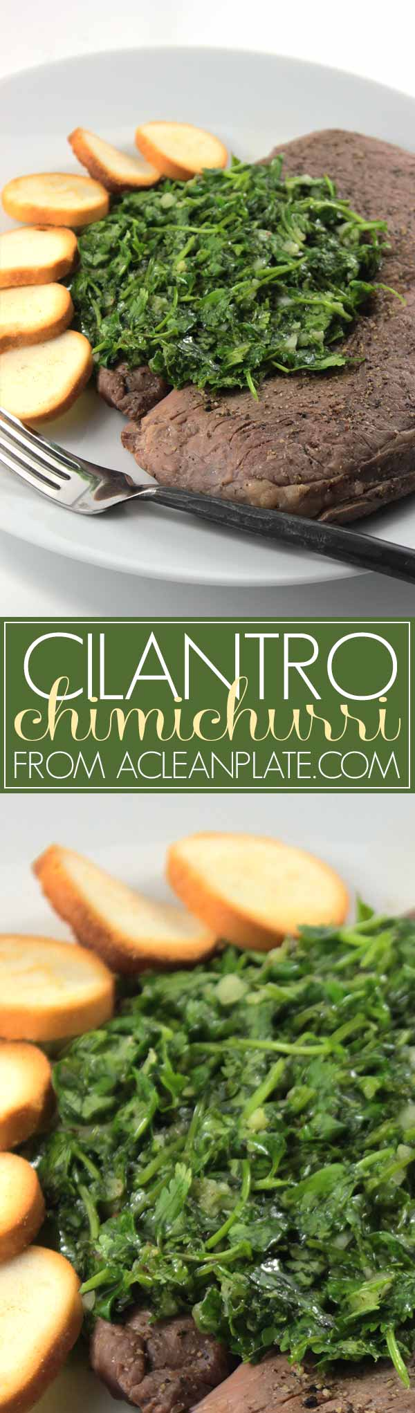 Cilantro Chimichurri recipe from acleanplate.com