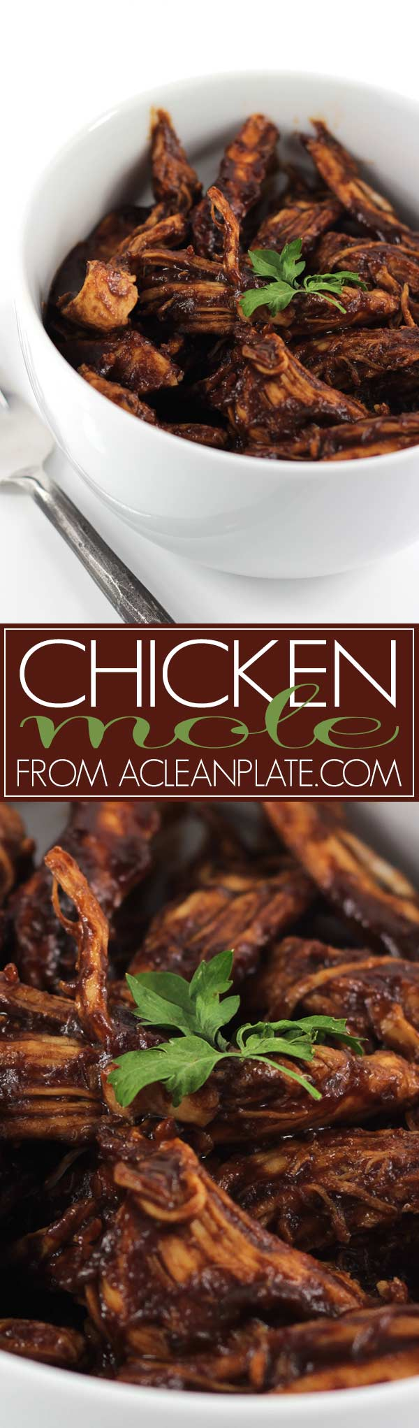 AIP Chicken Mole recipe from acleanplate.com
