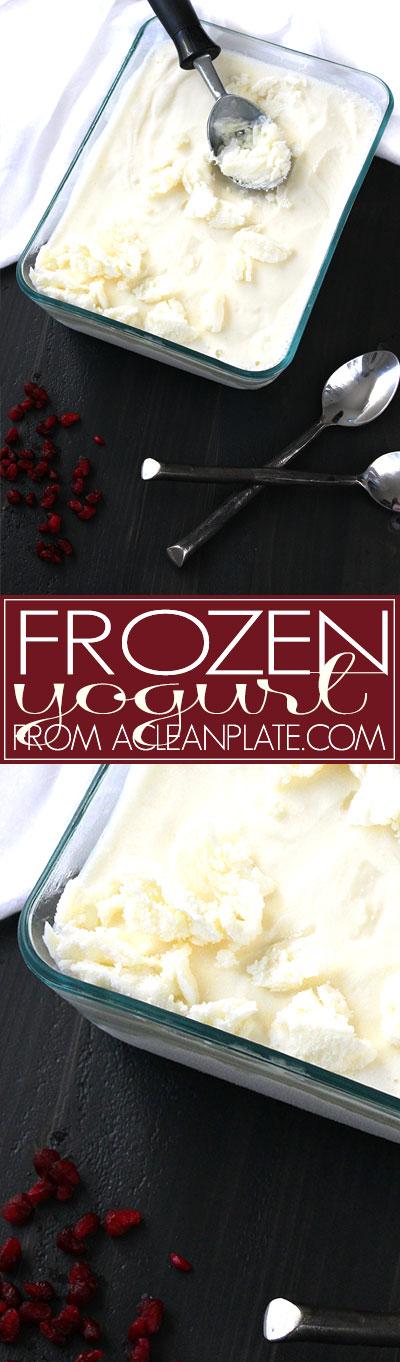 Dairy-Free Frozen Yogurt recipe from acleanplate.com